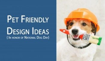 pet friendly designs